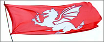 White Dragon Flag of England